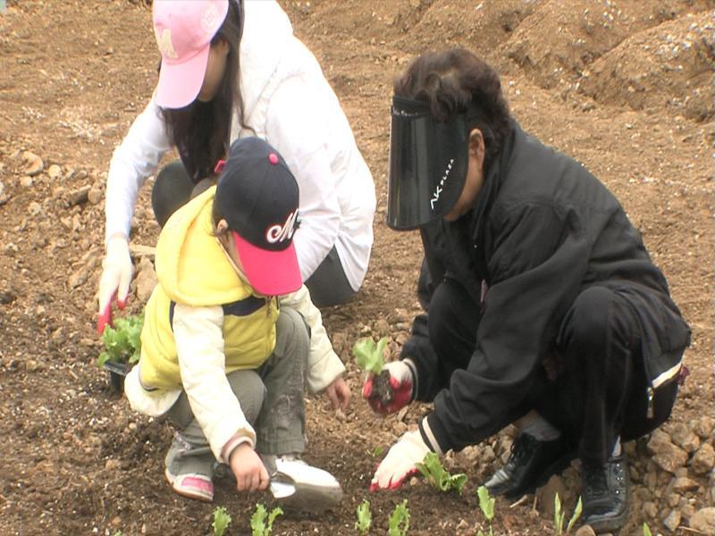 ▶'광명토종씨앗학교' 참여하세요!▶'5060 베이비부머 일자리사업' 참여자 모집